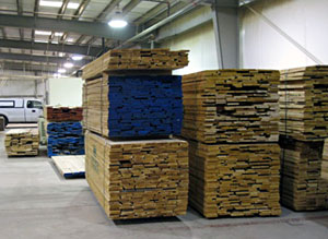 We stock a lot of different wood species